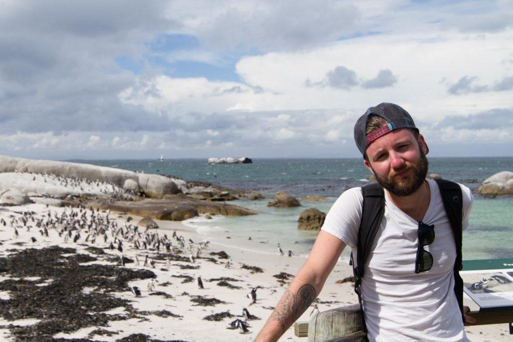 boulders beach pinguïn