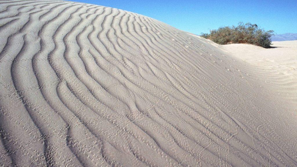 Alexandria Sand Dunes